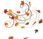 Autumn,Leaf,Vector,Maple Leaf,Swirl,Computer Graphic,Ilustration,Season,Design,Beautiful,No People,White Background,Vector Ornaments,Illustrations And Vector Art,Large Group of Objects