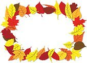 Bright,Nature,Plant,Colors,Orange Color,Red,White Color,Yellow,Bright,Multi Colored,Leaf,Season,Autumn,Maple Tree,Decoration,Frame,Cut Out,Color Image,Ornate,Illustration,Copy Space,No People,Vector,Vibrant Color,Banner - Sign,White Background,October,September,2015,Banner