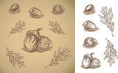 Acorn,Leaf,Oak,Oak Leaf,Woodcut,Autumn,Nut - Food,Etching,Sketch,Seed,Food,Vector,Drawing - Art Product,Forest,Nature,Ilustration,Plant,Watercolor Painting,Art,Decoration,Ornate,Monoprint,Dirty,Pencil Drawing,Design Element,Season,Outdoors,Grunge,Color Gradient,hand drawn,Still Life,Brown,Shadow,analogous,Painted Image,Nature Backgrounds,Vector Backgrounds,Fall,Beige,Illustrations And Vector Art,Nature