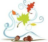 Leaf,Blowing,Wind,Autumn,Acorn,Flying,Fall,Nature
