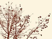 Abstract,Silhouette,Park Ji-Sung,Plant,Outdoors,Falling,Deciduous Tree,Illustration,Nature,Leaf,Twig,2015,Autumn,Botany,Environment,Forest,Season,Branch,Tree,Vector