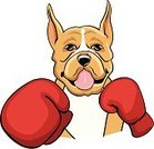 Boxer,Boxing,Dog,Bulldog,Cartoon,Combat Sport,Sports Glove,Sport,Boxing - Heavyweight,Animal,One Animal,Illustrations And Vector Art,Animals And Pets,Sports And Fitness,Individual Sports,Carnivore,Dogs,Vector Cartoons,Male Animal,Vertebrate,Trained Dog,Traditional Sport,Purebred Dog