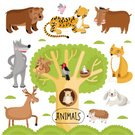 Multi Colored,Nature,Wildlife,Illustration,Collection,Cute,Vector,Animal,Bear,Owl,Squirrel,Tree,Hedgehog,Deer,Wild Boar,Wolf,Tropical Rainforest