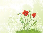 Poppy,Flower,Grass,Swirl,Floral Pattern,Red,Vector,Backgrounds,Nature,Grunge,Green Color,Flowers,Nature,Nature Backgrounds,Plant,Group of Objects,Illustrations And Vector Art