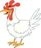 Chicken - Bird,Rooster,Poultry,Outline,Pets,Vector,Isolated On White,Bird,Ruler of the Roost,Free Range,White Background,No People,Ilustration