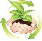 Human Hand,Seedling,Dirt,Plant,Water,Vector,Environmental Conservation,Green Color,Recycling,Growth,Sapling,Leaf,Land,Arrow Symbol,Environment,Drop,Ideas,Nature,Inspiration,Concepts,New Life,Creativity,Stem,Vector Florals,Illustrations And Vector Art,Nature,Plants,Nature Symbols/Metaphors