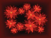 Poinsettia,Christmas,Flower,Christmas Decoration,Affectionate,Holiday,Holidays And Celebrations,Flowers,Christmas,Nature,Vibrant Color,Beauty In Nature,Celebration,Illustrations And Vector Art
