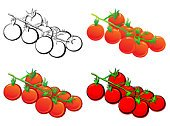 Tomato,Cherry Tomato,Vegetable,Ilustration,Plant,Vector,Collection,Set,Green Color,Isolated,White Background,Red,Vector Icons,Fruits And Vegetables,Nature,Illustrations And Vector Art,Food And Drink