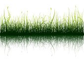 Grass,Plant,Silhouette,Vector,Isolated,Rural Scene,Green Color,Landscape,Agriculture,Bush,Reflection,White,Nature,Abstract,Leaf,Botany,Growth,Land,Ilustration,White Background,Horizon,Lawn,Design Element,Summer,Shadow,Image,Springtime,Lush Foliage,Outdoors,Painted Image,Isolated On White