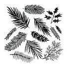 Computer Graphics,268399,Art And Craft,Sketch,Plant,Art,Doodle,Silhouette,Painting,Beauty,Gothic Style,Ornate,Design,Evergreen Tree,Collection,Beautiful People,Summer,Illustration,Nature,Ink,Leaf,Twig,Pinaceae,2015,Fir Tree,Berry Fruit,Isolated,Organic,Winter,Computer Graphic,Aubusson,Spiked,Paintbrush,Botany,Drawing - Activity,Forest,Paint,Bare Tree,Branch,Backgrounds,Retro Styled,Abstract,Modern,Beauty In Nature,Pine Tree,Black Color,Tree,Fun,Decor,Vector,Springtime,Design,Drawing - Art Product,Design Element,Spruce Tree