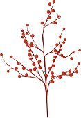 Berry,Branch,Berry Fruit,Winter,Christmas,Holiday,Red,Flower,Autumn,Vector,Leaf,Blossom,Plant,Blue,Growth,Elegance,Christmas Ornament,Forest,Decoration,Christmas Decoration,Ilustration,Brown,Nature,Springtime,Season,Art,Celebration,Illustrations And Vector Art