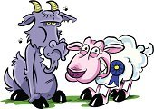 Goat,Sheep,Cartoon,Lamb,Humor,Farm,Livestock,Unpleasant Smell,Bible,Sour Taste,Drawing - Activity,Allegory Painting,Award,Incentive,Frustration,Smiley Face,Unhygienic,Farm Animals,Animals And Pets,Success,Concepts And Ideas,Rural Scene,Clean,Hoof