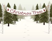 Tree,Christmas,Lot,Sale,Banner,Christmas Tree,Snow,Winter,Fence,Christmas,Winter,Nature,Holidays And Celebrations