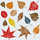 Leaf,Autumn,Maple Leaf,Weathered,Nature,Grunge,Plant,Computer Graphic,Clip Art,Isolated,Vector,Icon Set,Ilustration,Set,Vector Icons,Illustrations And Vector Art,Nature