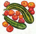 Horizontal,No People,Vegetable,Zucchini,Tomato,2015,Circle,Watercolor Painting,Photography,Red,White Color,Yellow