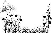 Plant,Silhouette,Flower,Carnation,Meadow,Grass,Flower Bed,Black Color,Growth,Herb,Botany,Nature,Landscape,Lily,Leaf,Dill,Black And White,Natural Pattern,Cultivated,Summer,Landscaped,Strawflower,Painted Image,Tracing,Beauty In Nature,Copy Space