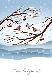 Vertical,Background,Holiday - Event,Greeting Card,Template,New Year's Day,Christmas,Snowdrift,Illustration,Sky,2015,Old World Bullfinch,Flying,Winter,Bird,New Year,Season,Branch,Backgrounds,Snow,Eurasian Bullfinch,Snowing,Blue