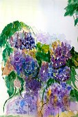 Vertical,No People,Flower,Greeting Card,Lilac,Illustration,Nature,Image,2015,Watercolor Paints,Backgrounds,Textured,Purple