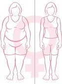 Comparison,Lifestyles,Healthcare And Medicine,Overweight,Muscular Build,Slim,Healthy Lifestyle,Adult,Color Image,Gender Symbol,Illustration,Side By Side,Females,Women,Vector,Thin