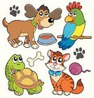 Turtle,Domestic Cat,Dog,Cartoon,Pets,Parrot,Animal,Bird,Cute,Cockatoo,Domestic Animals,Kitten,Puppy,Set,Paw,Playing,Vector,Dog Bone,Art Product,Ilustration,Collection,Play,Art,Drawing - Art Product,Indoors,Friendship,Drawing - Activity,Ribbon,Smiling,Mammal,Multi Colored,Feather,Isolated,Happiness,Color Image,Isolated Objects,Playful,Illustrations And Vector Art,Objects with Clipping Paths,Canine,Beak,Feline,Animals And Pets