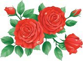 Rose - Flower,Rosé,Valentine's Day - Holiday,Flower,Bouquet,Vector,Red,Ilustration,Leaf,Bud,Candid,Clip Art,Petal,Abstract,Design,Drop,Close-up,Dew,Design Element,Digitally Generated Image,Nature,Color Image,Beauty In Nature,Group of Objects,Green Color,Flowers,Valentine's Day,Holidays And Celebrations,Nature,No People,Illustrations And Vector Art