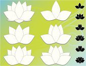 Lotus Water Lily,Water Lily,Flower,Single Flower,White,Vector,Blue,Floral Pattern,Backgrounds,Black Color,Computer Icon,Green Color,Tranquil Scene,Turquoise
