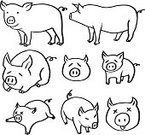 Butchery,Horizontal,Simplicity,No People,Sleeping,Pork,Farm,Animal,Cartoon,Collection,Mammal,Illustration,Symbol,Food,Overweight,Domestic Pig,Pasture,Vector,Piglet,Pig,Meat,Domestic Animals