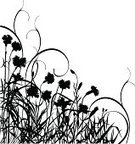 Carnation,Silhouette,Flower,Flower Bed,Plant,Grass,Meadow,Branch,Black Color,flourishes,Floral Pattern,Growth,Summer,Leaf,Nature,Scroll Shape,Natural Pattern,Botany,Stem,Beauty In Nature,Curled Up