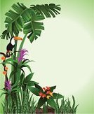 Tropical Rainforest,Animal,Rainforest,Tropical Climate,Toucan,Forest,Backgrounds,Vector,Tree,Ilustration,Leaf,Flower,Plant,Bird,Bush,Green Color,Grass,Animals In The Wild,Nature,Summer,Nature,Illustrations And Vector Art,Animals And Pets,Birds,Nature Backgrounds