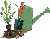Gardening,Planting,Tree,Shovel,Watering Can,Root,Arbor Day,Vector,Day,Trowel,Seedling,Environment,Clip Art,Plant,Ilustration,Illustrations And Vector Art,Plants,Concepts And Ideas,Nature,Green Color,Environmental Conservation,Color Image,Isolated