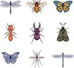 Dragonfly,Bee,Insect,Mosquito,Butterfly - Insect,Vector,Ant,Symbol,Moth,Icon Set,Drawing - Art Product,Beetle,Animal,Ilustration,Macro,Wing,Stag Beetle,Isolated,Set,Symmetry,Pencil Drawing,Isolated On White,Collection,Summer,Animals And Pets,Group Of Animals,No People,Illustrations And Vector Art,Insects,Group of Objects