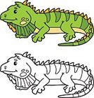 Characters,Animal,Cute,Cartoon,Iguana,Coloring,Illustration,Zoo,Mascot,Outline,Overweight,Happiness,Coloring Book,Drawing - Activity,Lizard,Small,Fun,Vector