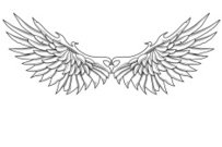 Artificial Wing,Tattoo,Wing,Angel,Eagle - Bird,Bird,Vector,Gothic Style,Drawing - Art Product,Feather,Swirl,Sketch,City Life,Pencil Drawing,Fantasy,Design Element,Black And White,Cool,Drawing - Activity,Symbol,Ilustration,Funky,Complexity,tattoo style,No People,graphic element,Background Element,Concepts And Ideas,Pen And Ink,Vector Ornaments,Illustrations And Vector Art,Birds,Animals And Pets