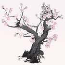 Tree,Cherry Blossom,Art Nouveau,Single Flower,Rose - Flower,Vector,Flower,Art Deco,Black Color,Gothic Style,Branch,White,Retro Revival,Grunge,Woodcut,Engraving,Engraved Image,Plant,Leaf,Ilustration,Nature,Decoration,Springtime,Ornate,Botany,Oriental Style Woodblock Art,Design Element,Isolated,Illustrations And Vector Art,Nature,Holidays And Celebrations