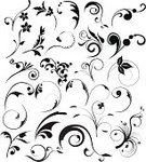 Ornate,Scroll,Vine,Scroll Shape,Flower,Floral Pattern,flourishes,Leaf,Design Element,Swirl,Pattern,Design,Vector,Black Color,Victorian Style,Elegance,Grunge,Decoration,Backgrounds,Silhouette,Old-fashioned,Computer Graphic,Outline,Abstract,Art,Curve,Black And White,Nature,Ilustration,Angle,Springtime,Gothic Style,Clip Art,Antique,Summer,Creativity,Back Lit,Style,Renaissance,Cut Out,Wallpaper Pattern,Horizontal,Intricacy,Digitally Generated Image,Concepts,Cartouche,Isolated On White,Illustrations And Vector Art,Ideas,graphic elements,Vector Florals,Painted Image