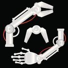 Robot,Machine Part,Human Arm,Arm,Claw,Machinery,Human Hand,Vehicle Part,Factory,Production Line,Futuristic,Industry,Technology,Construction Machinery,Forecasting,Vector,Metal,Gear,Agricultural Machinery,Engine,Ilustration,Animal Finger,Human Finger,Part Of,Construction Industry,Tongs,Heavy,Equipment,Silver Colored,Modern,Steel,Iron - Metal,Silver - Metal,Satin,Energy,Danger,Power Supply,Power,Shiny,Isolated,Medicine And Science,Equipment,New
