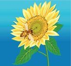 Bee,Sunflower,Flower,Honey,Honeycomb,Ilustration,Vector,Single Object,Pollination,Yellow,Stem,Pollen,Leaf,Perfection,Petal,Vibrant Color,Attitude,Concepts And Ideas,Insects,Nature,Wing,Shaggy,Animals And Pets,interrelation,Feelings And Emotions,Flowers,Sweet Food,Sky,Green Color,Ripe,Sun,Bonding