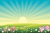 Easter,Sunrise - Dawn,Flower,Springtime,Clip Art,Nature,Vector,Ilustration,Summer,Eggs,Morning,Field,Season,Plant,Scenics,Lush Foliage,Composition,Freshness,Spring,Holidays And Celebrations,Easter,Vector Florals,Nature,Sunbeam,Colors,Horizontal,Design Element,Illustrations And Vector Art