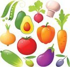 Carrot,Tomato,Vegetable,Cooking,Avocado,Radish,Green Pea,Pea Pod,Olive,Icon Set,Food,Onion,Cucumber,Cheerful,Vitamin Pill,Season,Edible Mushroom,Leaving,Design Element,Pepper - Vegetable,Eggplant,Freshness,Autumn,Drop,Food And Drink,Isolated-Background Objects,Vector Icons,Decoration,Illustrations And Vector Art,Isolated Objects,Multi Colored,Isolated On White,Fruits And Vegetables,Ripe