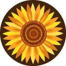Sunflower,Vector,Ilustration,Illustrations And Vector Art,Orange Color,Yellow