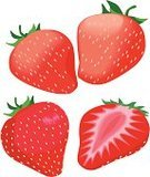 Strawberry,Fruit,Vector,Ilustration,Food,Fruits And Vegetables,Food And Drink,Illustrations And Vector Art