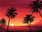 Beach,Sunset,Palm Tree,Tropical Climate,Coconut Palm Tree,Tourist Resort,Travel,Sea,Summer,Tree,Spring Break,Poster,Sun,Non-Urban Scene,Backgrounds,Night,Symbol,Scenics,Computer Icon,Tropical Tree,Urban Scene,Coastline,Weekend Activities,People Traveling,Island,Journey,Sand,Vacations,Landscape,Reflection,Relaxation,Nature,Exploration,Shiny,Symbols Of Peace,Water,Beaches,Cloudscape,Nature Backgrounds,Cloud - Sky,Water's Edge,Leaf,Loneliness,Season,Horizon Over Water,Real Estate,Seascape,Tranquil Scene,Travel Destinations,Nature,Single Line,Peace On Earth,Sky,Light at the End of the Tunnel,Solitude,Outdoors,Hope,Travel Locations