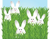 Humor,Background,Meadow,Animal,Cute,Holiday - Event,Beauty,Baby Rabbit,Cheerful,Beautiful People,Mammal,Illustration,Nature,Rabbit - Animal,Easter,Happiness,Pets,Decoration,Small,Backgrounds,Beauty In Nature,Grass,Fun,Vector,Springtime,Design,Domestic Animals