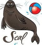 Humor,South Pole,Stage - Performance Space,Animal Tricks,Animal,Cute,Training Class,Cartoon,Cheerful,Drop,Mammal,Illustration,Zoo,Performer,Circus,Pets,Wet,Sea Lion,Acting,Acting,Water,Seal - Animal,Vector,Smiling