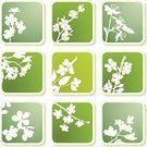 Cherry Blossom,Flower,Silhouette,Floral Pattern,Apple Blossom,Blossom,Pattern,Backgrounds,Vector,Abstract,Leaf,Computer Icon,Sign,Peach Blossom,Plum Blossom,Shadow,Label,Design,Green Color,Springtime,Summer,Nature,Plant,Botany,Icon Set,Ornate,Decoration,Design Element,Growth,Apricot Blossom,Season,Ilustration,Square Shape,Color Image,Natural Pattern,Clip Art,Painted Image,Beauty In Nature