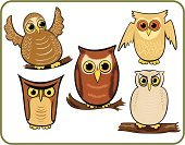 Owl,Bird,Cartoon,Vector,Ilustration,Night,Humor,Standing Out From The Crowd,Cute,Wing,Five Animals,Set,Illustrations And Vector Art,Vector Cartoons,Animals And Pets,Birds,Bird of Prey,Collection,Computer Icon,Feather,big eyes