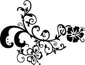 Vine,Flower,Floral Pattern,Symbol,Computer Graphic,Design,Pattern,Vector,Modern,White Background,Leaf,Swirl,Black Color,Ornate,Scroll Shape,Plant,Victorian Style,Design Element,Branch,Tracing,Outline,Black And White,Ilustration,Decoration,Drawing - Art Product,Old-fashioned,Retro Revival,Curve,Clipping Path,Spotted,Elegance,Clip Art