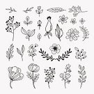 Child,111645,60912,Frame,Composition,Elegance,Retro Styled,Flower,Craft,Art And Craft,Sketch,Plant,Art,Love,Doodle,Herb,Cute,Wedding,Holiday - Event,Greeting Card,Old-fashioned,Cartoon,Cheerful,Congratulating,Herbal Medicine,Summer,Illustration,Nature,Leaf,Single Flower,Berry Fruit,Hipster - Person,Outline,Happiness,Organic,Berry,Heart Shape,Decoration,Berry,Social Issues,Rose - Flower,Curve,Environmental Conservation,Grass,Springtime,Label