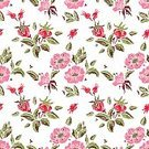 Romance,Love,Doodle,Holiday - Event,Linocut,Template,Summer,Illustration,Dog Rose,Inviting,Invitation,Backdrop,Seamless Pattern,Decoration,Affectionate,Bouquet,Vector,Pink Color
