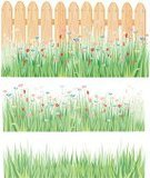 Meadow,Fence,Grass,Wood - Material,Backgrounds,Flower,Pattern,Field,Vector,Blossom,Leaf,Green Color,Single Flower,Design,Purple,Floral Pattern,Grass Area,Lawn,Plank,Weed,Nature,Frame,Plant,Blue,Colors,Summer,Isolated,Springtime,Environment,Multi Colored,Color Image,Red